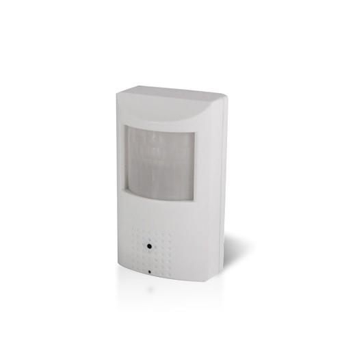 Caméra détecteur de présence factice