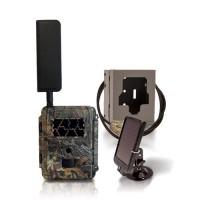 Caméra solaire de chasse autonome 4G HD 8MP IR invisible cryptage 256 bits avec box antivandale & panneau solaire