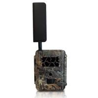 Caméra de chasse autonome 4G HD 8MP avec IR invisible et cryptage 256 bits