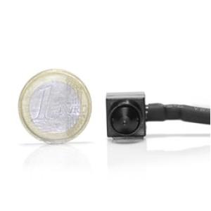 Micro snake couleur CCD 420 lignes Jour/nuit Pinhole audio